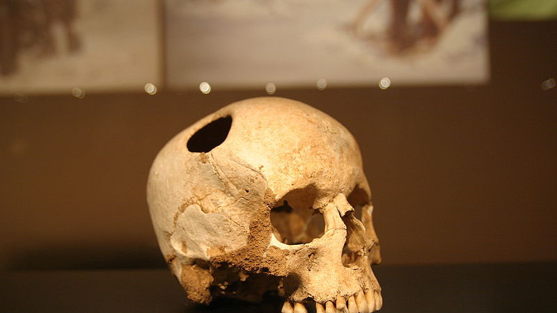 Author Argues That Even In Paleolithic >> Changing Minds How My Views On Paleolithic Violence Evolved