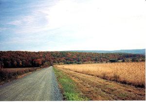 Fall_Country_Road_(Macadam)